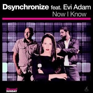 ES-2255-Dsynchronize-feat-Evi-Adam-Now-I-Know-Single-600